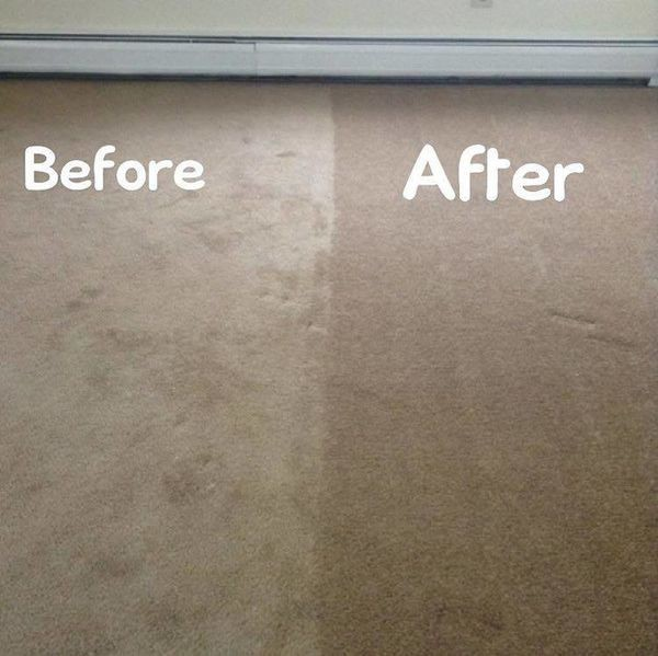 Carpet Cleaning in Branford, CT (1)