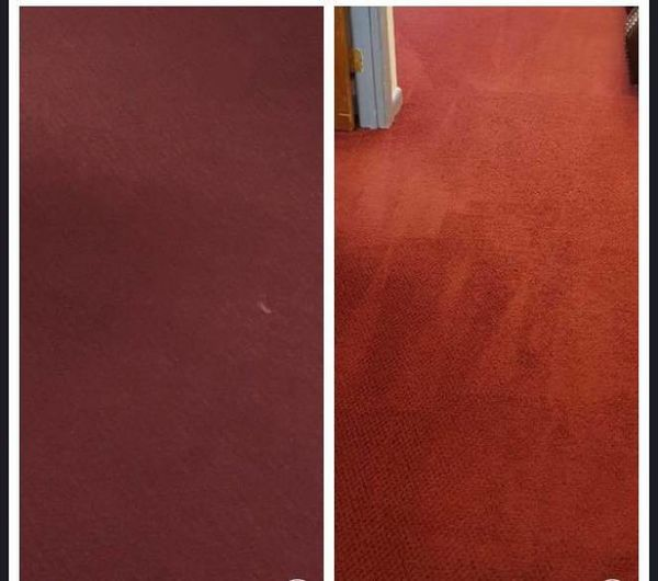 Before & After Hot Water Extraction in Shelton, CT (1)