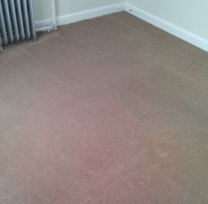 Before & After Carpet Cleaning in New Haven, CT (2)