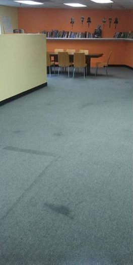 Before & After Carpet Cleaning by Pride Cleaning Pros LLC (1)
